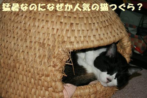 003_convert_20110717221503.jpg
