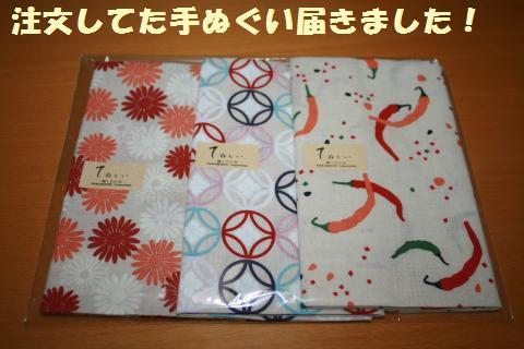 003_convert_20110825211753.jpg