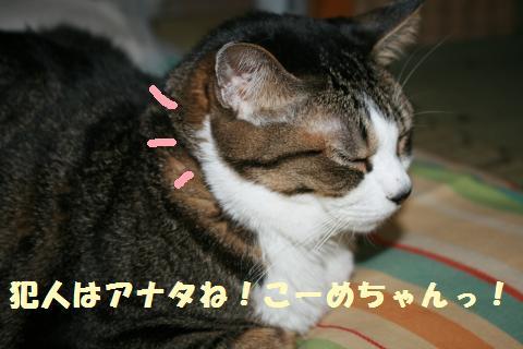 003_convert_20110828225423.jpg
