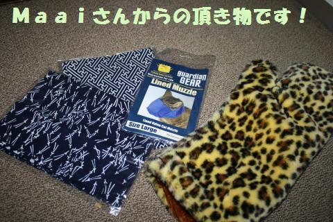 003_convert_20111013173736.jpg