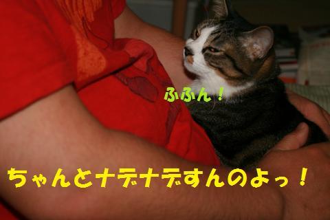 004_convert_20100504213022.jpg