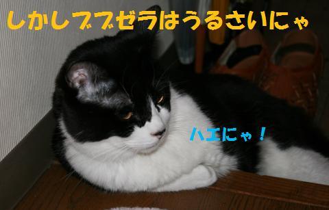 004_convert_20100613170158.jpg