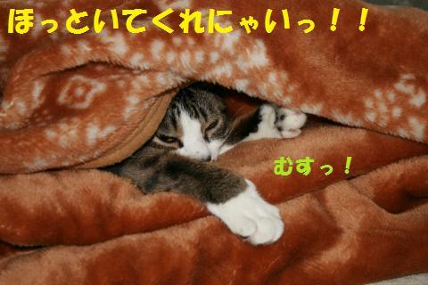 004_convert_20100620201950.jpg