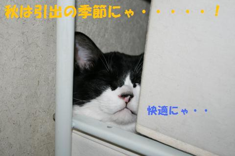 005_convert_20100915215820.jpg