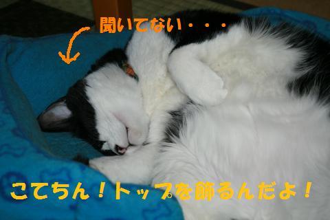 005_convert_20101001225816.jpg