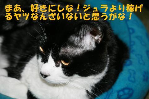 005_convert_20101022235351.jpg