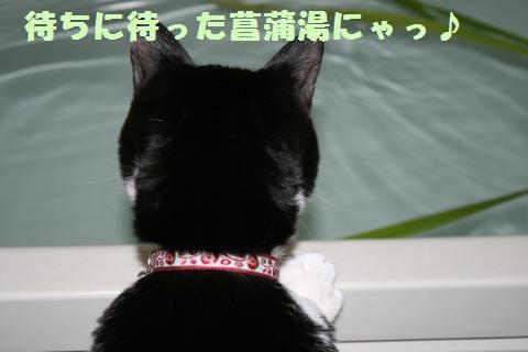 005_convert_20110508171700.jpg