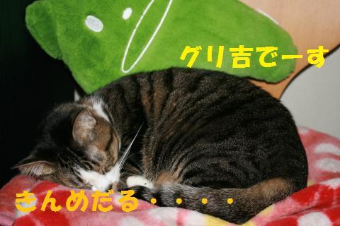 006_convert_20100223223523.jpg