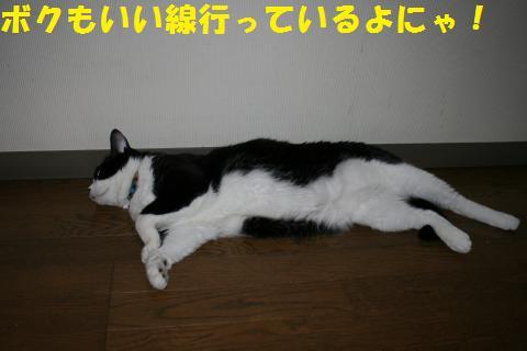 006_convert_20100826204824.jpg
