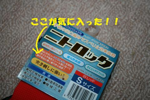 006_convert_20110329230448.jpg