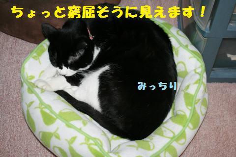 006_convert_20110516181544.jpg