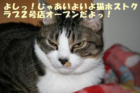 006_convert_20110521233607.jpg