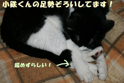 006_convert_20110722204514.jpg