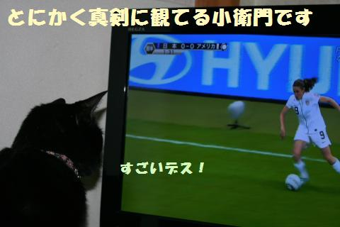 006_convert_20111002172132.jpg