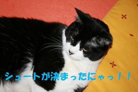 007_convert_20100622165910.jpg