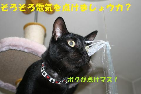 007_convert_20100904212651.jpg