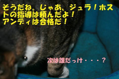 007_convert_20101028161957.jpg