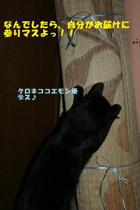 007_convert_20101223204108.jpg