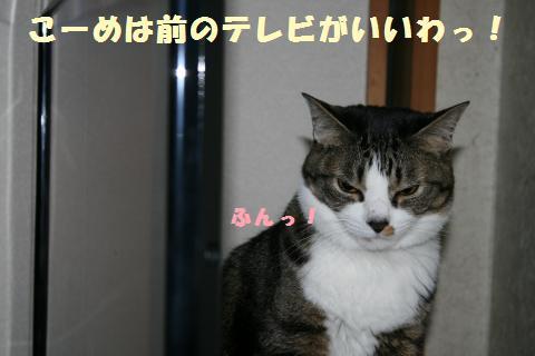 007_convert_20110531213220.jpg