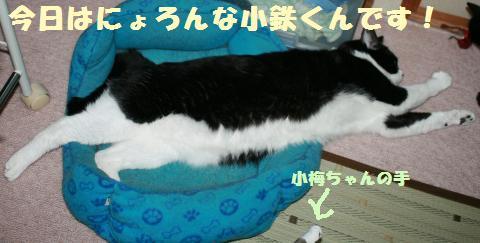 007_convert_20110915212415.jpg