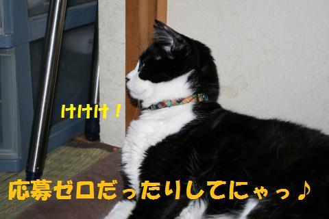 008_convert_20100608185230.jpg