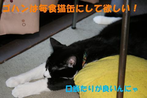 008_convert_20100824215559.jpg