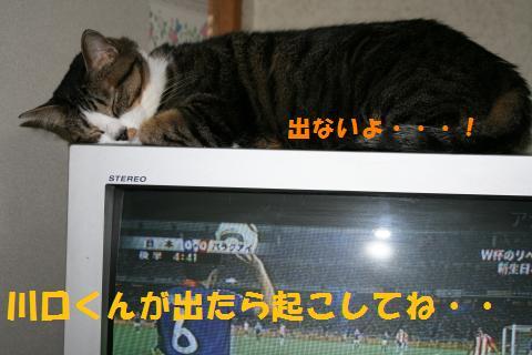 008_convert_20100904212956.jpg