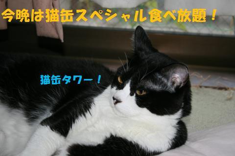 008_convert_20100919213349.jpg