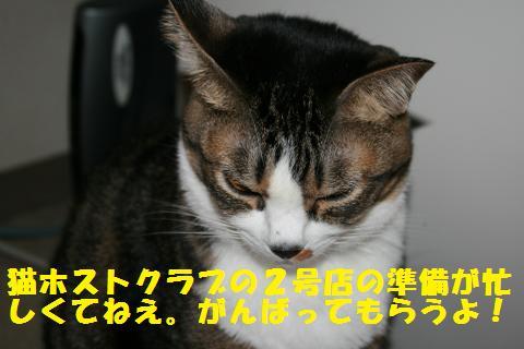 008_convert_20101210223003.jpg