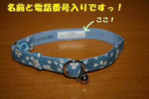 008_convert_20110505215555.jpg