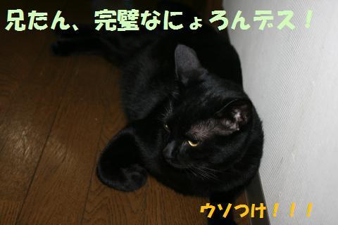 009_convert_20100826205331.jpg
