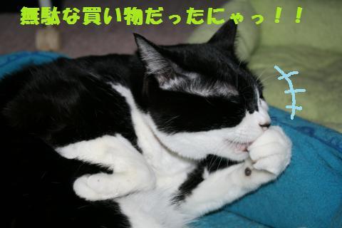 009_convert_20110421192010.jpg