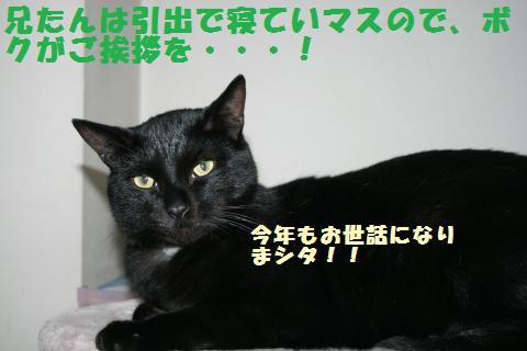 009_convert_20111231203530.jpg