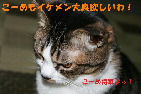 010_convert_20100914223001.jpg