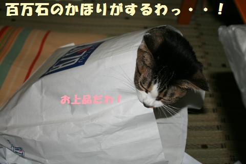 010_convert_20110722203811.jpg