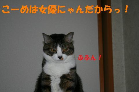 011_convert_20100410220620.jpg