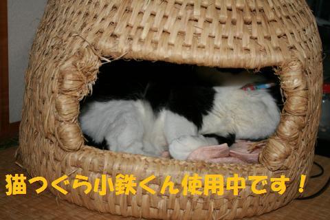 011_convert_20100414001806.jpg