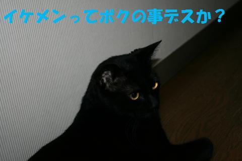 011_convert_20100615203208.jpg