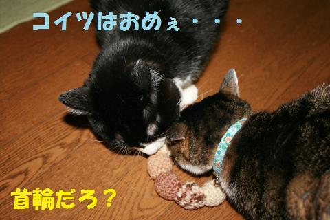 011_convert_20100806202452.jpg