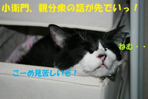 011_convert_20100807132638.jpg