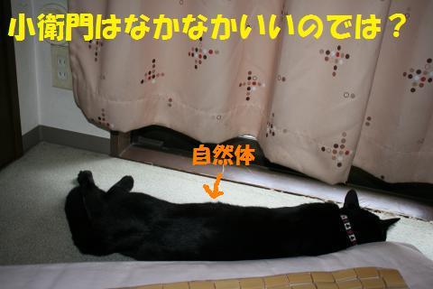 011_convert_20100828204413.jpg