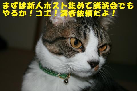 011_convert_20110415192106.jpg