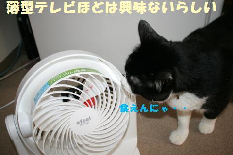 011_convert_20110703222734.jpg