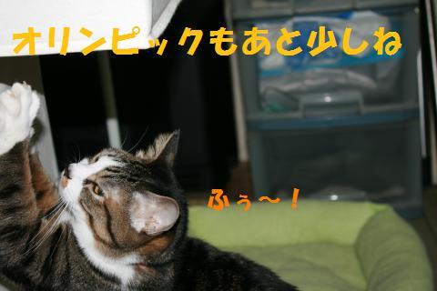 012_convert_20100227234952.jpg