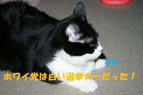 012_convert_20100928231003.jpg