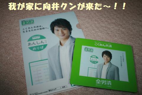 012_convert_20110606182602.jpg