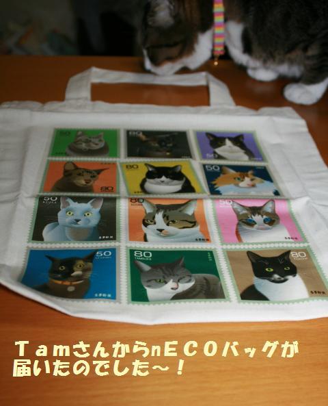 012_convert_20110708182806.jpg