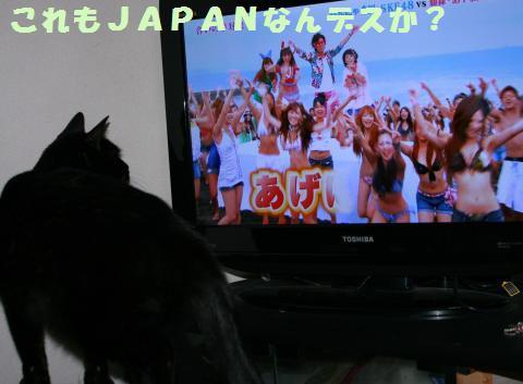 012_convert_20111002172223.jpg