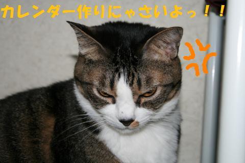 013_convert_20100925211226.jpg