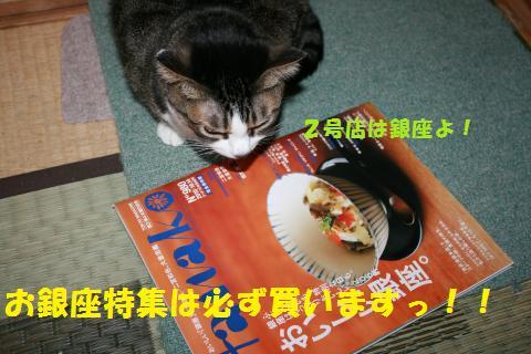013_convert_20100926215121.jpg
